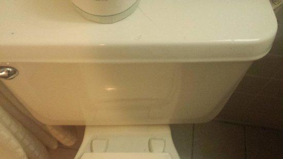 Econo Lodge: Pubic hair toilet