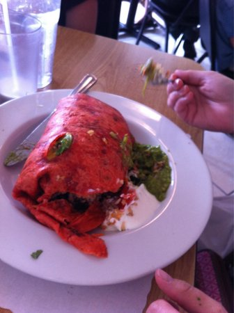 Taco Temple Morro Bay: Veggie! She only are 1/2 so I get breakfast!