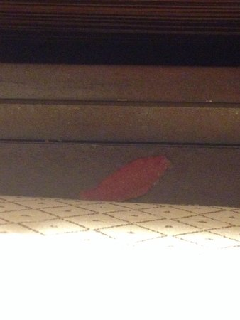 Renaissance Washington, DC Downtown Hotel: Swedish fish in furniture crevasse between bed and nightstand