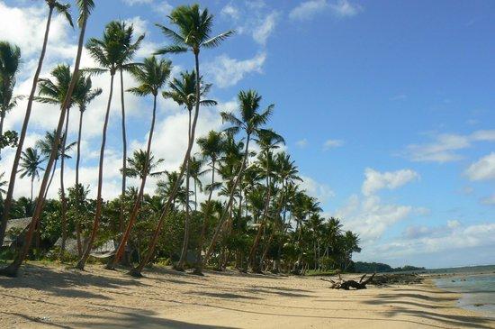 Tambua Sands : the beach
