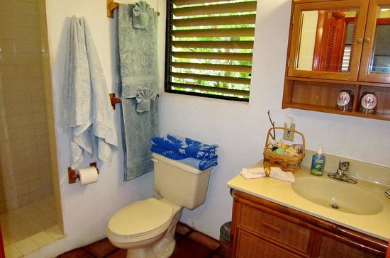 Harbour Club Villas & Marina: Bathroom with shower and lots of towels