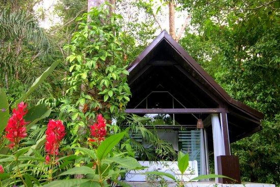 Oxygen Jungle Villas : Jungle villa