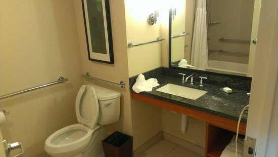 Doubletree Suites by Hilton Hotel & Conference Center Chicago / Downers Grove : Bathroom accessible suite