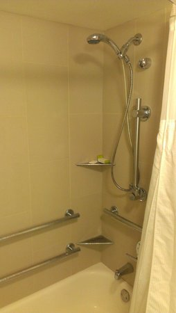 Doubletree Suites by Hilton Hotel & Conference Center Chicago / Downers Grove : Accessible tub with seat