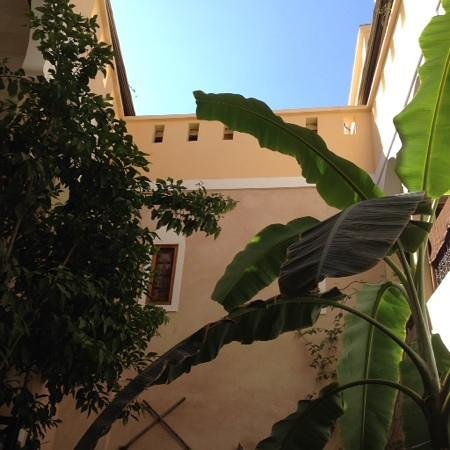 Riad Sidi Mimoune : view from breakfast table up to roof - lovely