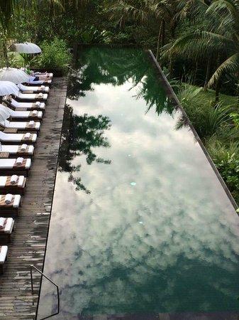 Komaneka at Bisma: Infinity pool