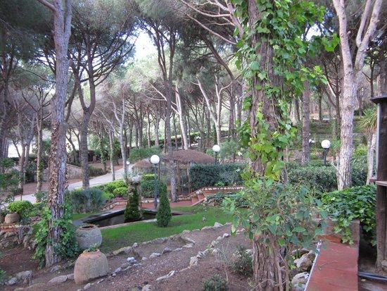 Hotel Garbi: Garden view