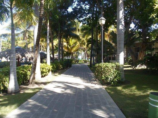 ClubHotel Riu Bachata: site