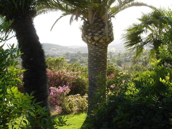 Residence Fenicia : Вид на горы