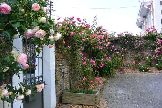 L'hôtel Ascott : in the garden