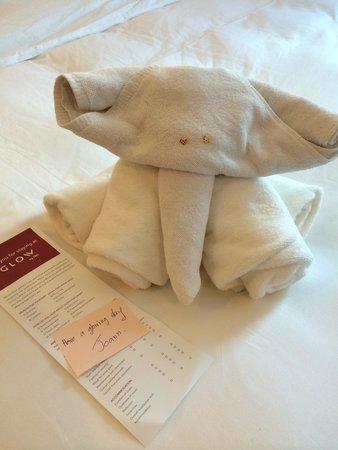 GLOW Pratunam: Elephant Towel