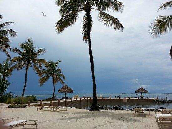 Kona Kai Resort, Gallery & Botanic Garden : Kona Kai's gorgeous beach!