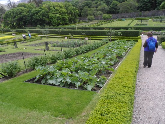 Kylemore Abbey & Victorian Walled Garden: Part of the Walled Garden
