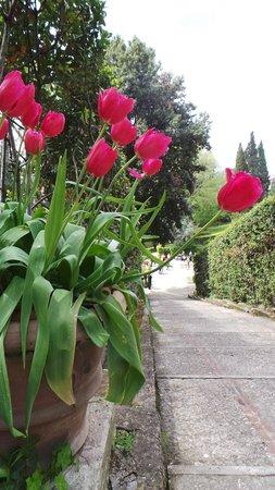 Villa d'Este : beautiful gardens