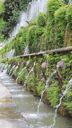 Villa d'Este : 100 fountains