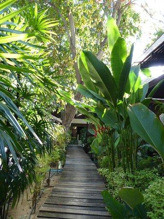 Chaweng Garden Beach Resort: Bungalowsdans un Jardin tropical