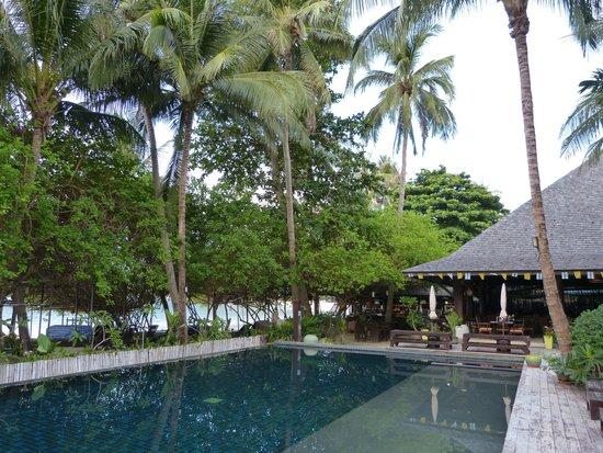 Chaweng Garden Beach Resort: Piscine