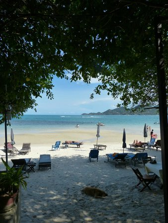 Chaweng Garden Beach Resort: Restaurant de plaGe