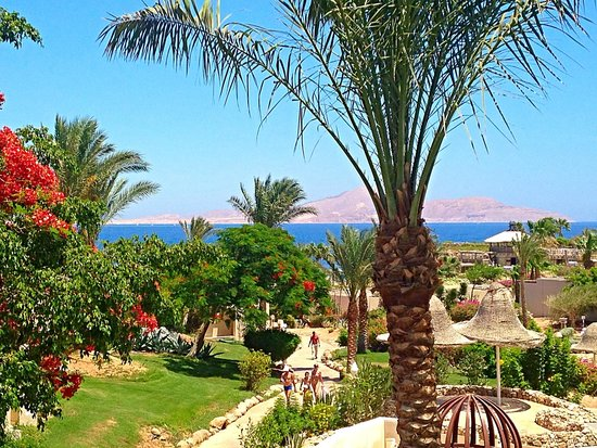Radisson Blu Resort, Sharm El Sheikh: Вид из номера днем