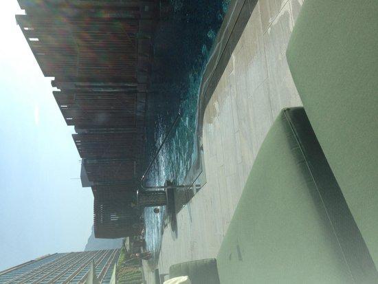 Royal Plaza Hotel: Swimming pool
