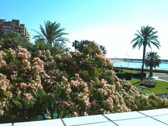 Parador de Benicarló: Vista del jardín y de la playa desde la terraza de la habitación