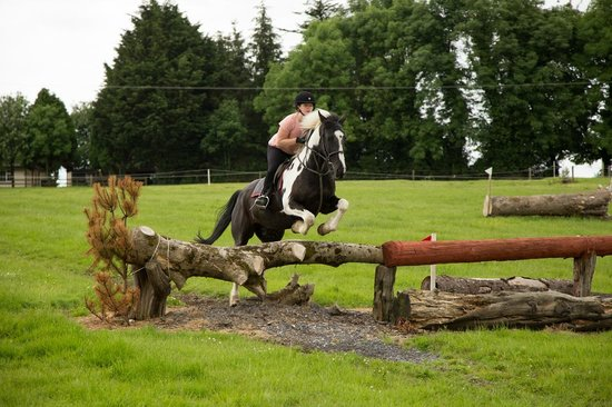 Flowerhill Equestrian Centre : Cross Country