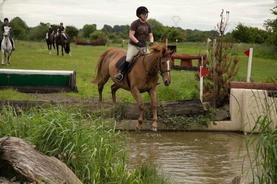 Cross Country Foto Di Flowerhill Equestrian Centre