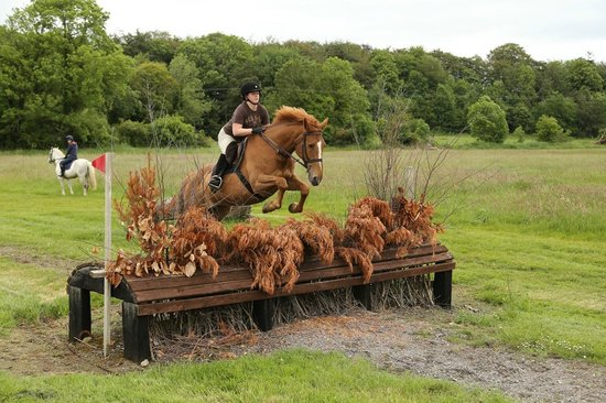 Flowerhill Equestrian Centre: Cross Country