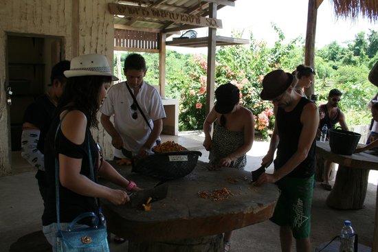 ElephantsWorld: Préparation du repas