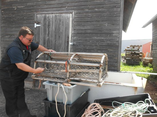 Take the Island Adventure Day Tours: Billy explaining lobster traps