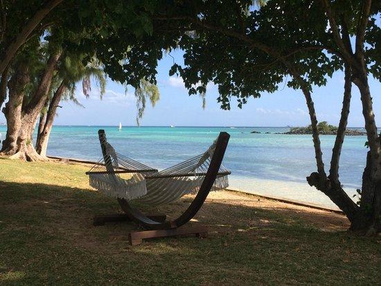 Club Med La Pointe aux Canonniers : Un hamac face à la mer pour la sieste !