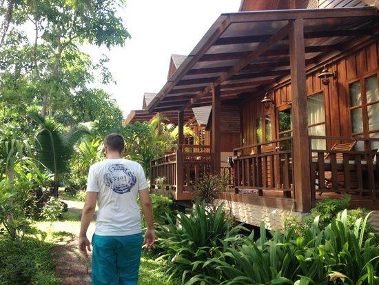 Green Papaya Resort : Rooms next to swimmingpool