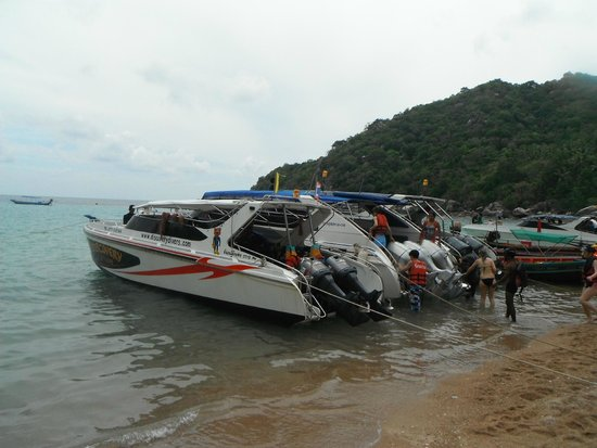 Discovery Dive Centre: Discovery Dives Boat