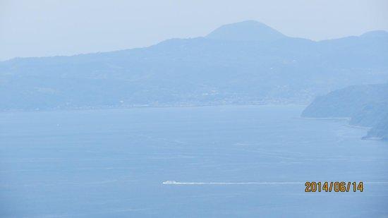 Hoshigayama Park Satsuki no sato : 展望台から伊豆半島を望む