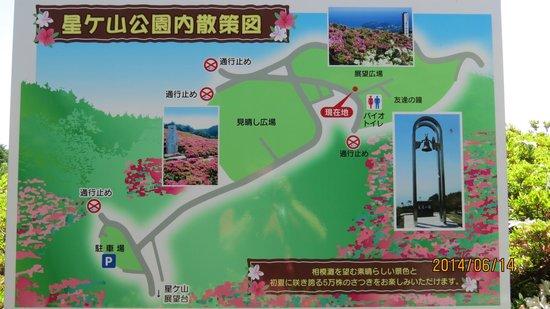 Hoshigayama Park Satsuki no sato : 星ケ山公園