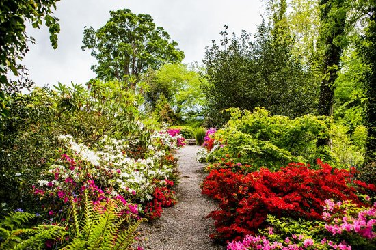 Plas Cadnant Holiday Cottages: Amazing planting