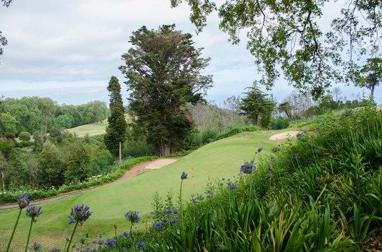 Casa Velha do Palheiro: Golf course