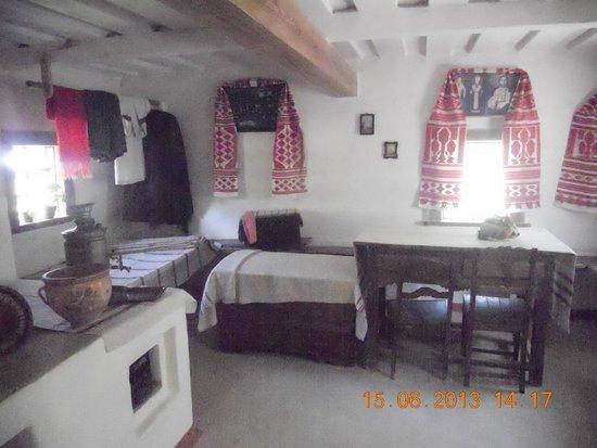 Pirogovo Open-Air Museum: В одной из изб