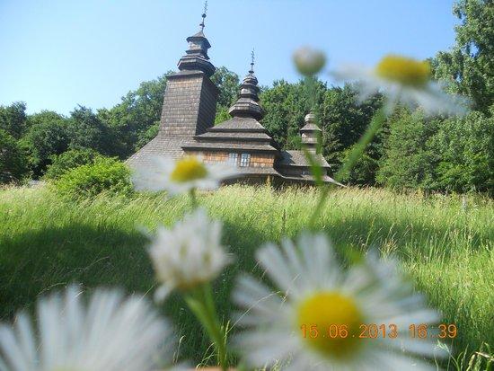 Pirogovo Open-Air Museum: Вид