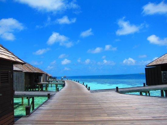 Lily Beach Resort & Spa : 水上コテージへの道のり