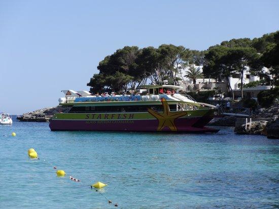 Gavimar Ariel Chico Club Resort: Sun Fish cruise