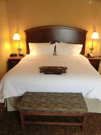 Hampton Inn Moab: King-Bett