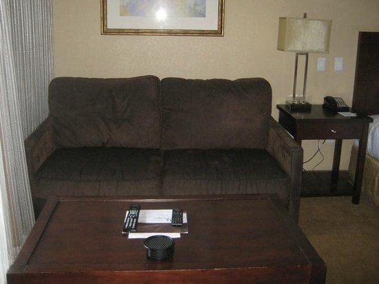 Sedona Summit Resort : small couch