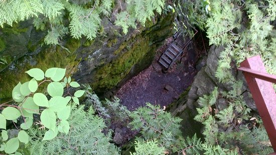 Scenic Caves Nature Adventures: 3