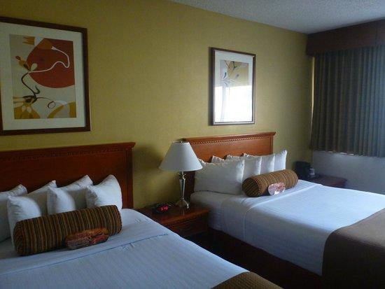 The Loyal Inn : the double room