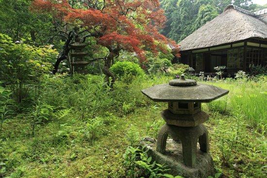 Jochiji Temple: 野趣あふれる眺め