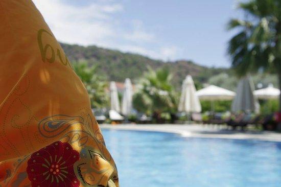 Nerissa Hotel : бассейн