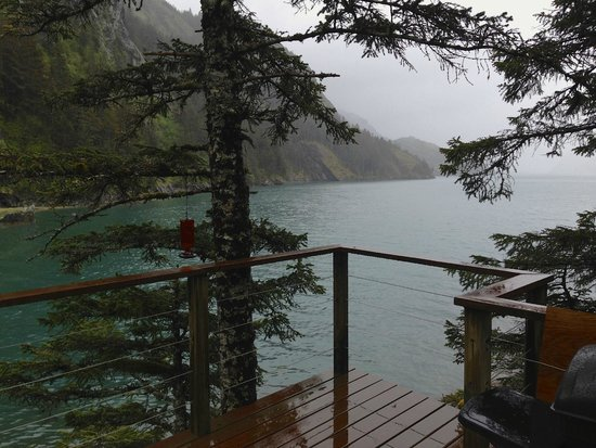 Orca Island Cabins: the view from our deck of the oyster catcher cabin