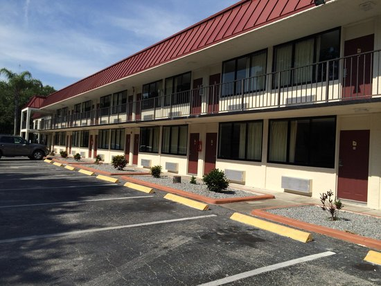 Delightful Knights Inn Palm Harbor   UPDATED 2017 Prices U0026 Hotel Reviews (FL)    TripAdvisor