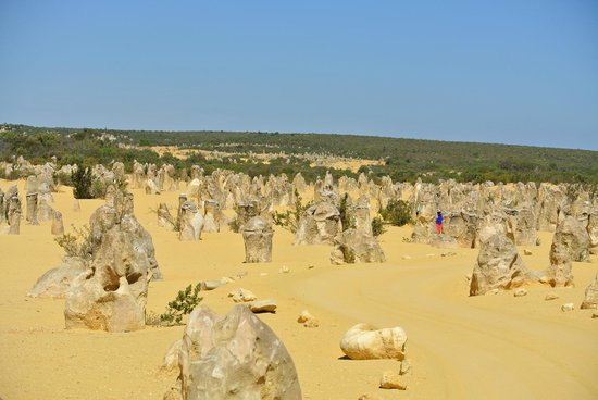 The Pinnacles: For miles and miles
